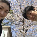 すでに祭りの雰囲気漂う、春爛漫の浜松市内。